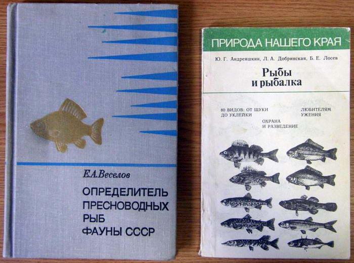 скачать книги о рыбалке торрент - фото 8