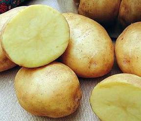Ловля карпа на картошку.
