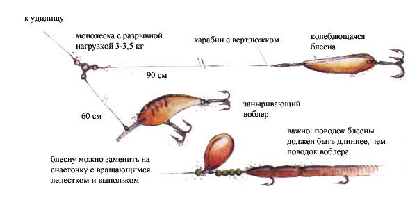 как ловить судака на блесну