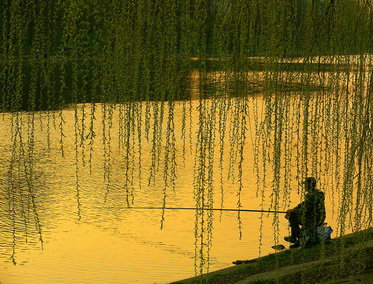 Мысли рыбака.