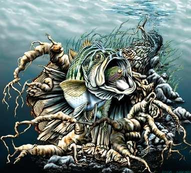 Задача найти 7 рыб