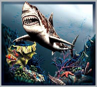 Задача найти 7 акул