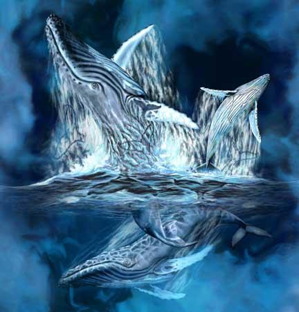 Найти 11 китов