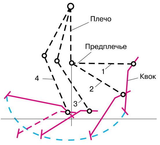Схема ловли на квок