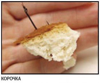 Ловля карпа на хлеб