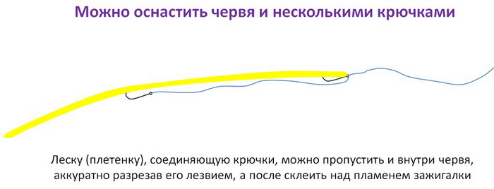 2809_club-fish.ru_4.jpg