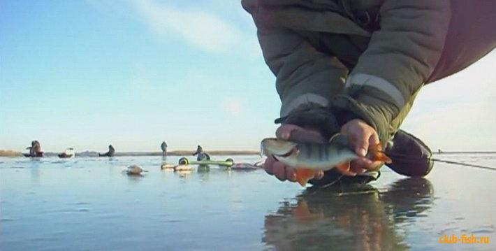 рыбалка информационно