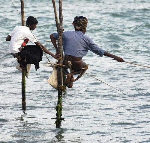 Рыбаки в Шри-Ланке - рыбалка на Шри-Ланке.