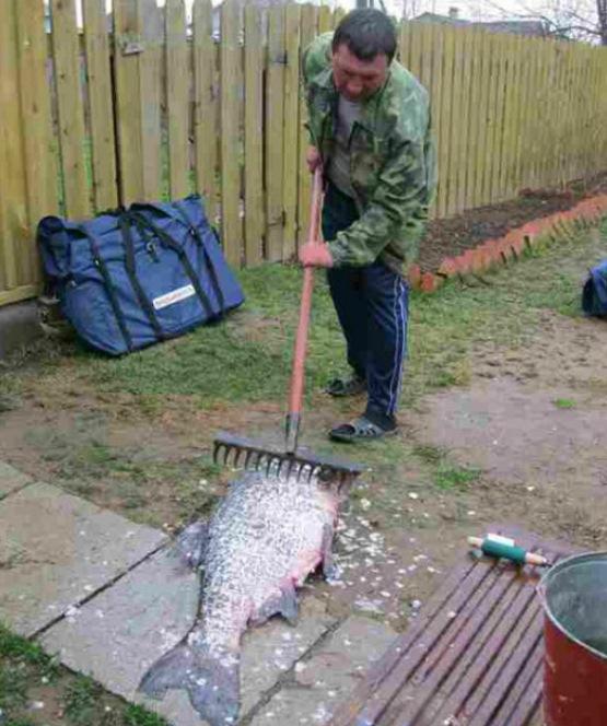 фото с приколами на рыбалке