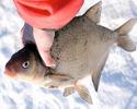 Зимняя рыбалка. Лещ с максимальной глубины