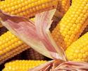 Насадка кукуруза