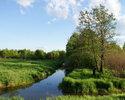 Ловля щуки на малых реках и мелиоративных каналах спиннингом