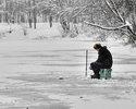 Ищем стоянки рыбы зимой.