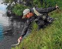 Стратегия ловли щуки на мелководье.