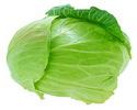 Рыболовные насадки: капустный лист для амура.