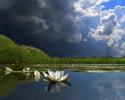 Воспоминания о наболевшем, или Жило-было озеро...