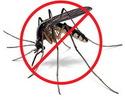 Как я спасаюсь на рыбалке от комаров и мошек.