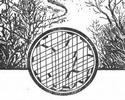 Под катом разминка для мозга для рыбаков в виде загадки-картинки ;).