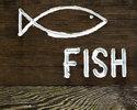 Щуку ловят на блесну, а рыбака - на басню