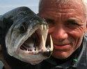 21 разновидность чудовищных речных рыб.