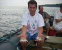 морские караси