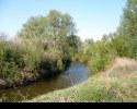 С добрым утром, река!