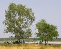 Вид на стоянку