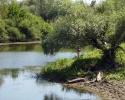 Ловля на ериках и островных озёрах