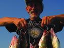 Наша рыбалка - Давай поймаем судака.