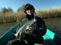 Диалоги о рыбалке - Астраханская область: Рыбалка на судака и щуку.