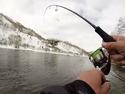 Ловля лосося в горных реках Камчатки на колебалку.