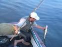 Ловля судака на снулую рыбку - видео.