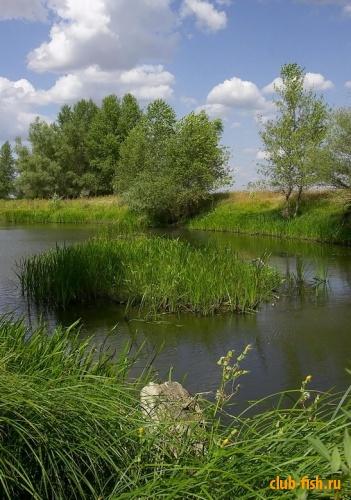 Астраханский пейзаж...