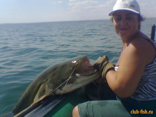 Рыбалка на Капчагайском водохранилище Казахстан.